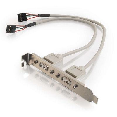 1ft 2-Port USB Internal AT Motherboard Adapter