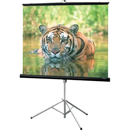 Draper 216001 Consul Projection Screen 40in x 40in