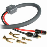 10ft 10 AWG SonicWave(R) Speaker Cable