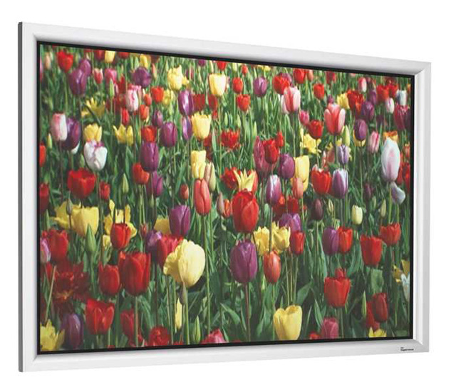DNP Supernova One 100in .85 gain 16:10 Fixed Frame Screen - Silver Aluminum