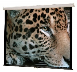Hamilton Buhl WS-W50 Manual Wall Front Projection Screen (50x50in.)