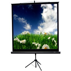 Recordex USA 84in. TriMaxx Advanced Tripod Screen 60 x 60in.