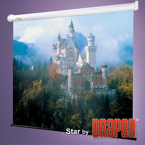 Draper 209001 Star Projection Screen 50in x 50in