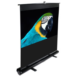 Elite F100NWH ezCinema Portable Front Projection Floor Screen 49 x 87in