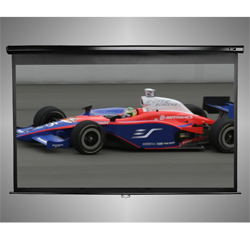 Manual Series Projection Screen (80 x 80in.) (113in. diag) 1:1