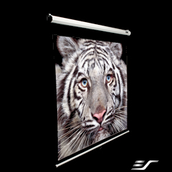 Elite 80in. Manual Series Projection Screen (48 x 64in.) (MaxWhite) 4:3