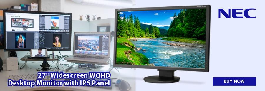 NEC Widescreen WQHD Monitor