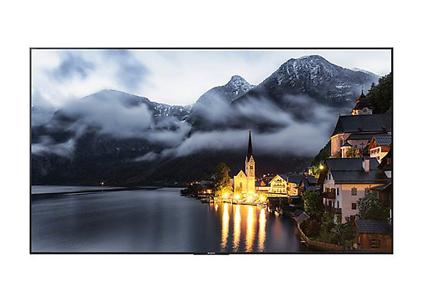 Sony BRAVIA 75in. 4K Professional Direct-Lit LED Display