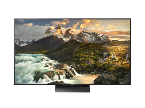 Sony BRAVIA 65in. 4K HDR Professional Direct-Lit LED Display