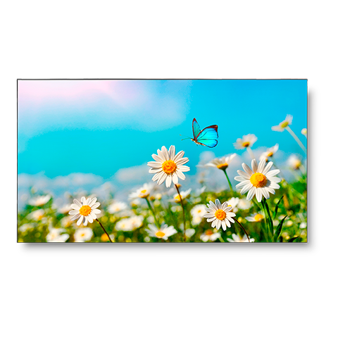 NEC UN462A-TMX4P 46in. LED-Backlit 3.5mm 2x2 Video Wall Bundle