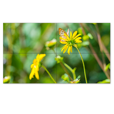 NEC UN551S-TMX4P 55in. Ultra Narrow Bezel S-IPS 2x2 Video Wall Solution
