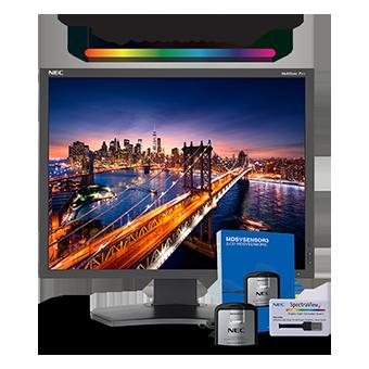 NEC P212-BK-SV Desktop Monitor