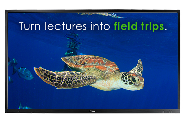 Optoma OP751RK+ 75in. 4K Creative Touch Interactive Flat Panel