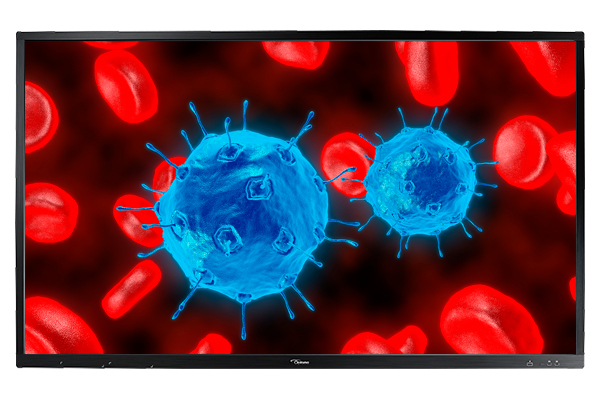Optoma OP861RK+ 86in. 4K Creative Touch Interactive Flat Panel