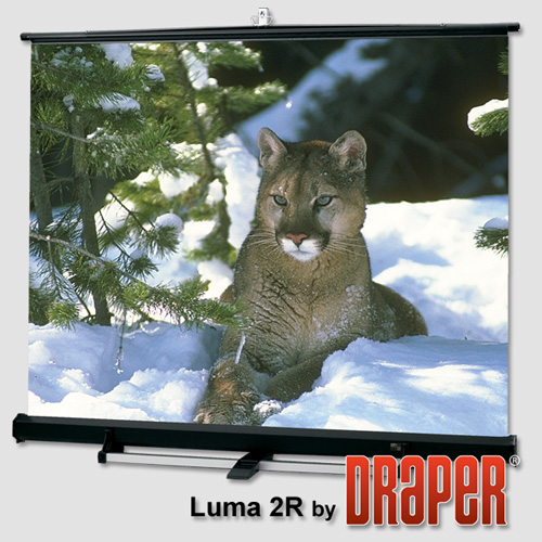 Draper 211011 Luma 2/R Projection Screen 150in