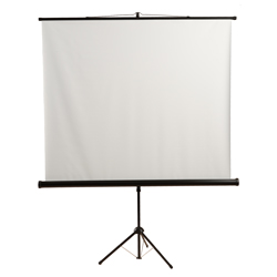 Mustang SC-T6011 60x60in. Tripod Front Projection Screen