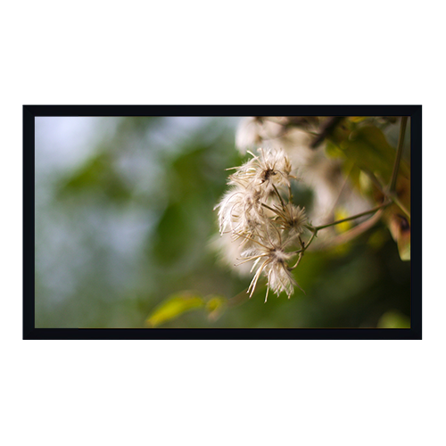 PSS PS169120HT 120in. Fixed Frame Projection Screen (58.9 x 104.6)